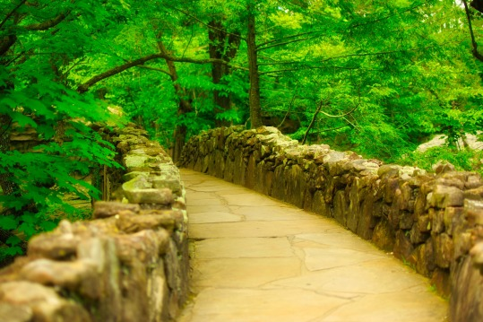 rock-city-gardens-3595343_1920