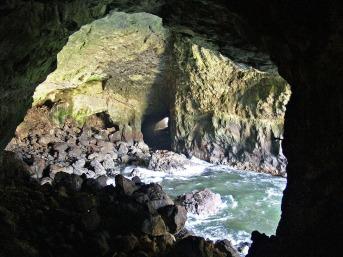 sea-lion-cave-51686_1920