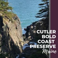 cutler bold coast preserve