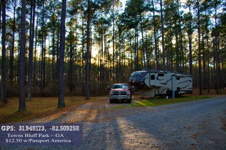 gpstownsbluff campground ga copy